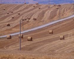 haystacks2
