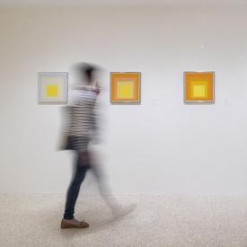 Josef Albers, Paggy Guggenheim Foundation 2018 rd