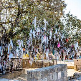 Wish Tree at St. Solomon's Catacombs, Cyprus